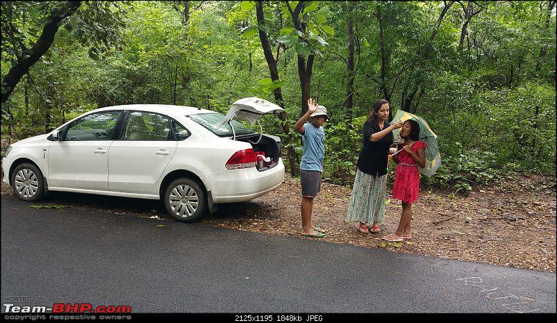 Polo forest, Gujarat: A Janmashtami in the rains-84.jpg