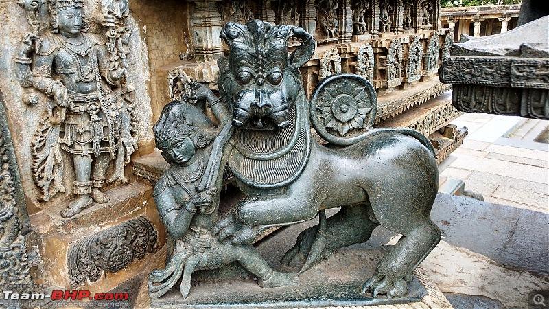 Road-Trip through West Karnataka-tiger.jpg