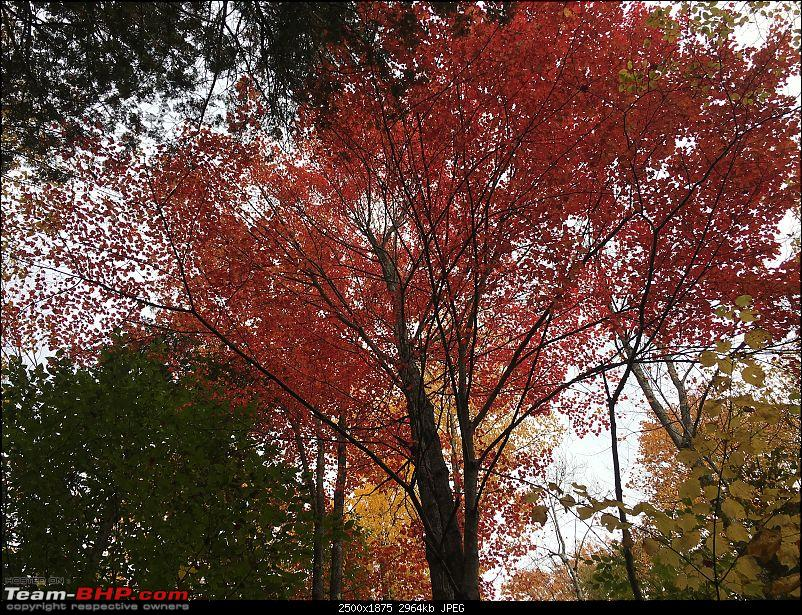 USA: New England at its colourful best-img_3830.jpg