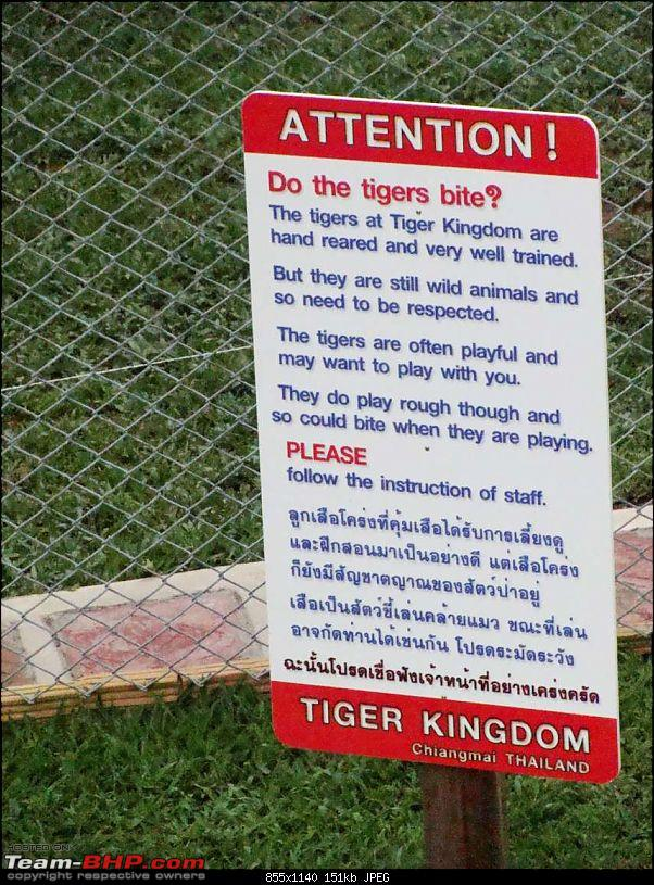 10 days across Thailand (2009) - and 8 more days (2011)-tigercnxk150.jpg