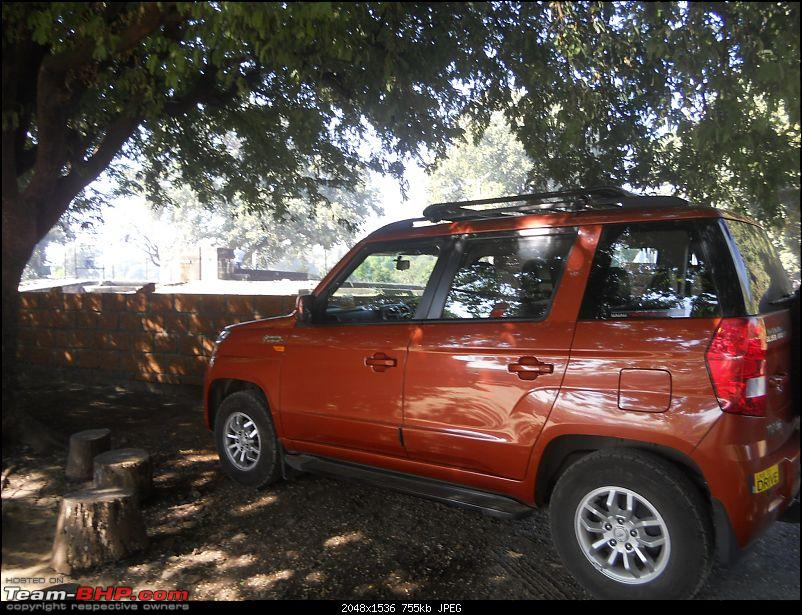 A day-trip: Baramotichi Vihir, Kaas Lake & Shivsagar Lake, Bamnoli-orange-tank-parked-under-shade-huge-tamarind-tree.jpg
