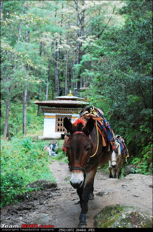 Throwback to a bygone era - Bhutan in a Bolero 4x4-dsc_6298.jpg