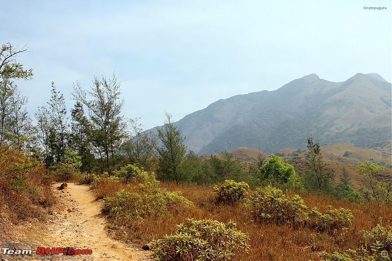 Trek to Kumara Parvatha, Karnataka-img_7660.jpg