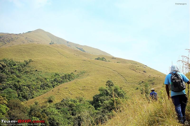 Trek to Kumara Parvatha, Karnataka-img_7740.jpg