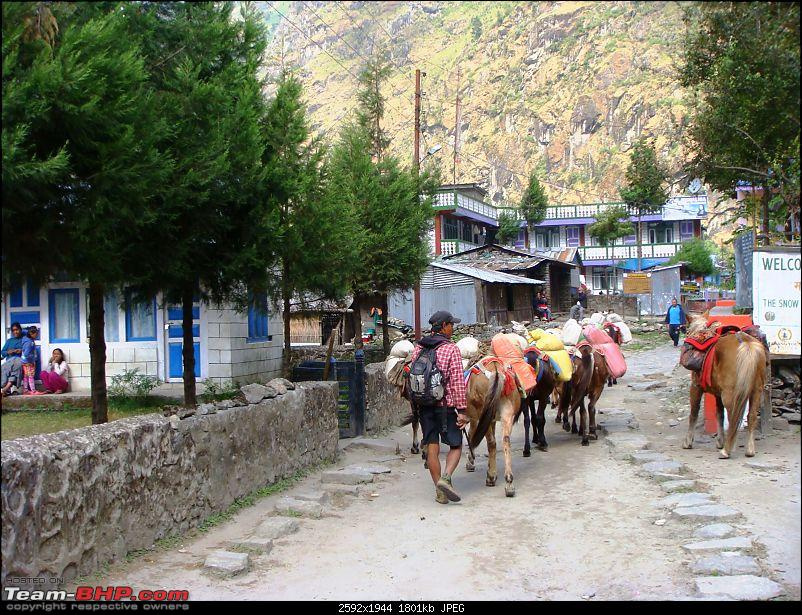 Offroad Trip to Manang (Nepal) in a Ford Endeavour - The journey of a lifetime-dsc09852.jpg