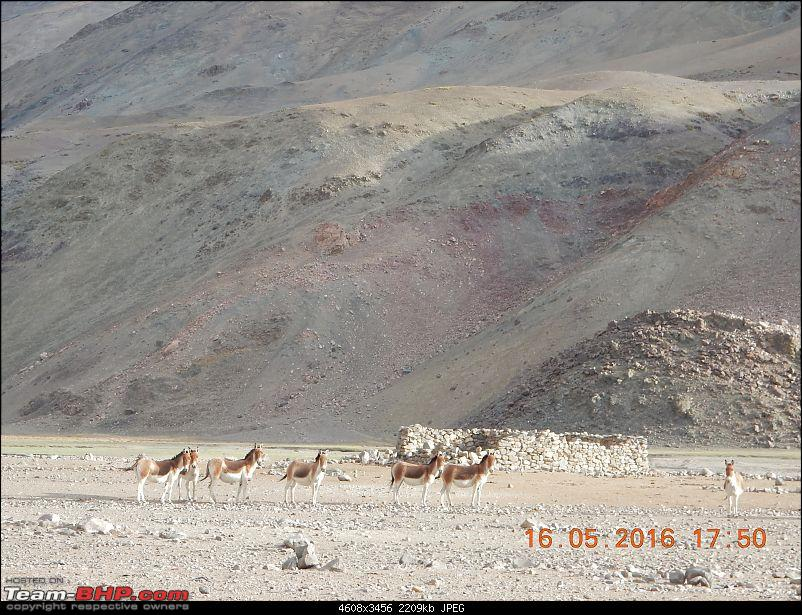 Driving holiday : Bangalore to Ladakh in a Scorpio 4x4-dscn0305.jpg
