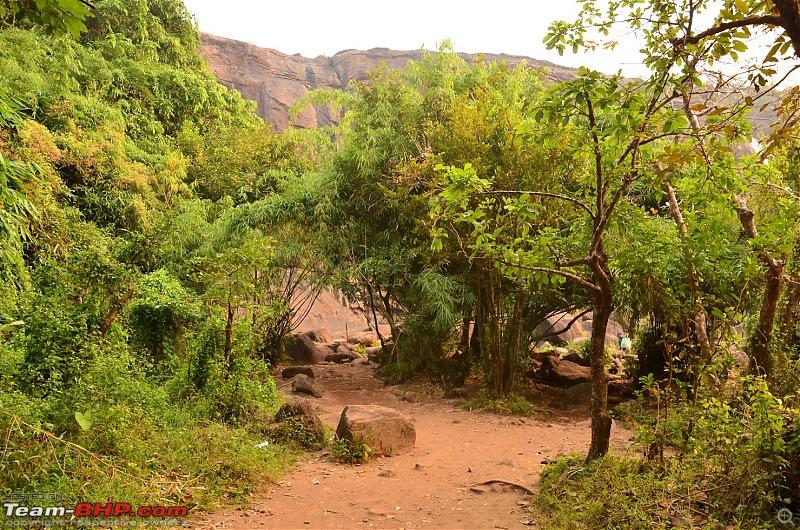 Road trip : Athirappilly & Valparai-20_dsc_0370.jpg
