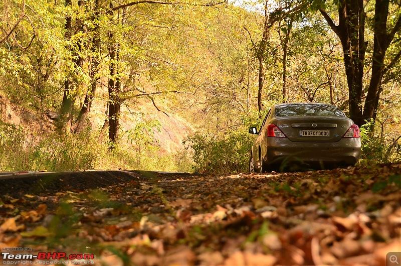 Road trip : Athirappilly & Valparai-12_dsc_0447.jpg