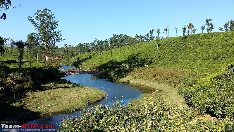 Road trip : Athirappilly & Valparai-09_20161227_161107.jpg