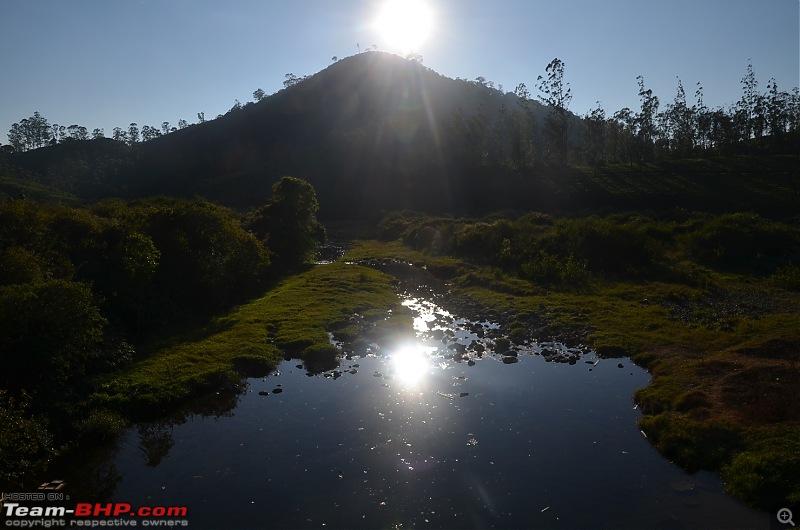Road trip : Athirappilly & Valparai-10_dsc_0613.jpg