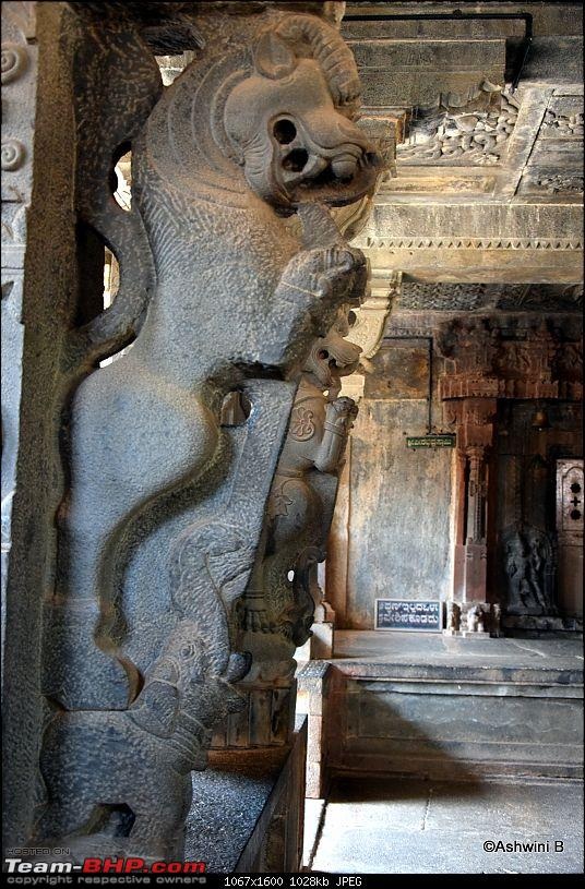 Red Dwarf Diaries - Chasing the Hoysala Architecture-kr15.jpg