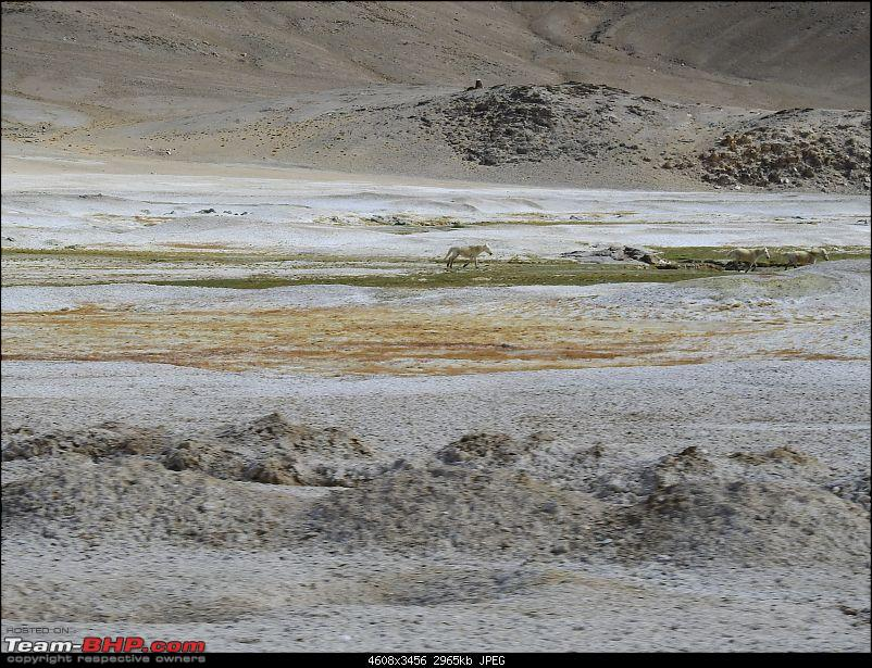 Driving holiday : Bangalore to Ladakh in a Scorpio 4x4-dscn3260.jpg