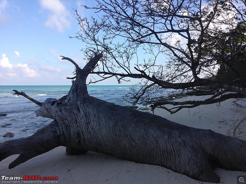 The Andaman Islands – Simply Irresistible-img_3146.jpg