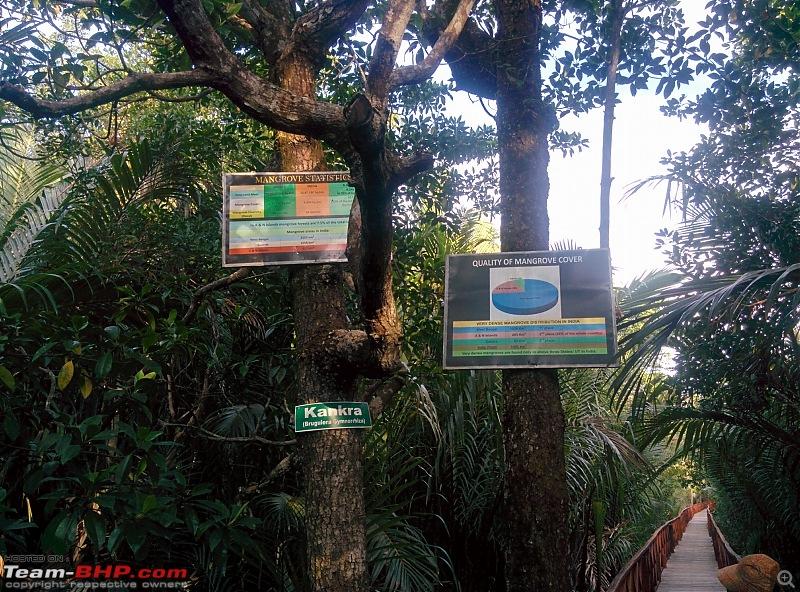 The Andaman Islands – Simply Irresistible-img_20161220_154235.jpg