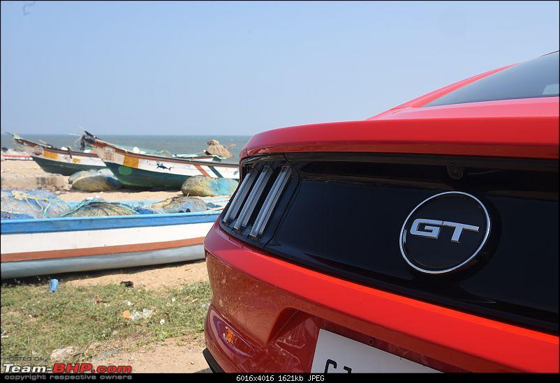 Spreading Xmas cheer from Bangalore to Chennai with the Ford Mustang-dsc_9079.jpg