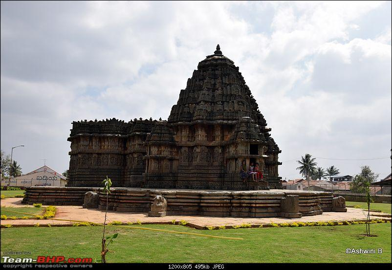 Red Dwarf Diaries - Chasing the Hoysala Architecture-h4.jpg