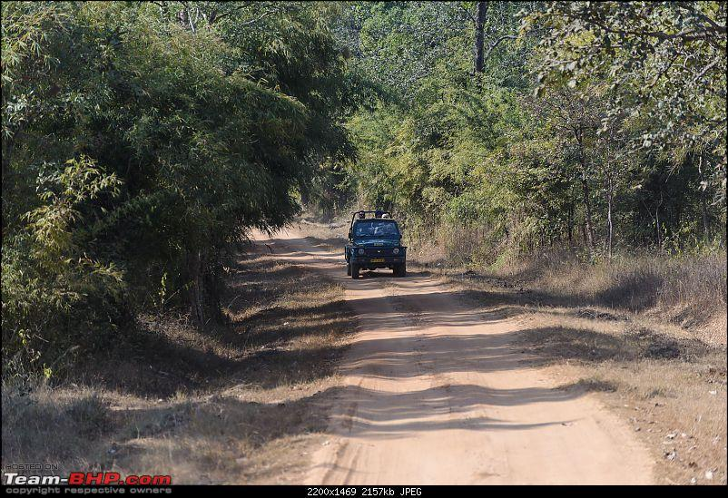 With Honda: 4 National Parks in Madhya Pradesh...and Khajuraho-aaa_7326.jpg