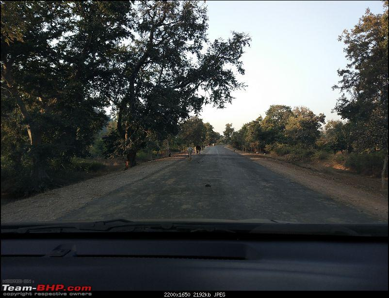 With Honda: 4 National Parks in Madhya Pradesh...and Khajuraho-img_20170112_164523.jpg