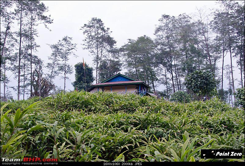 Another escape to Majestic Sikkim - Richenpong, Pelling, Okhrey & Varsey-tkd_1264.jpg