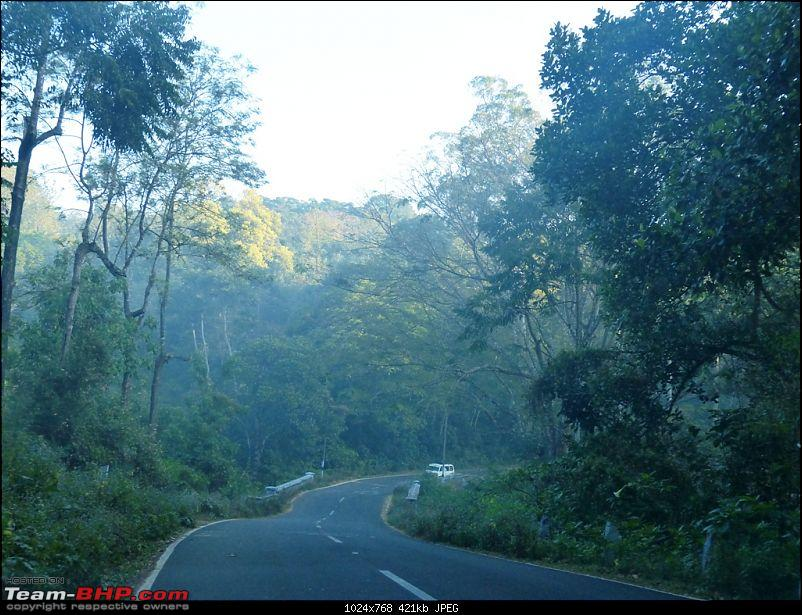 Pun-toured: The beautiful Western Ghats revisited-p1060352.jpg