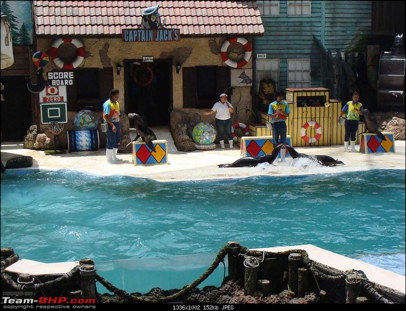 10 days across Thailand (2009) - and 8 more days (2011)-sealion-5.jpg