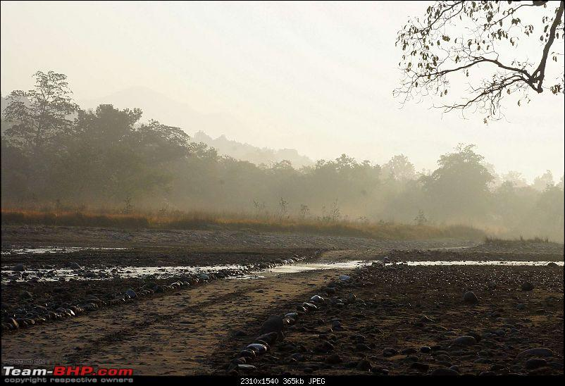 Hawk-On-Fours® (H-4®) Roadtrip: Rajaji National Park, Chilla | A short vacation & an angry elephant-chillanpmorning-3.jpg