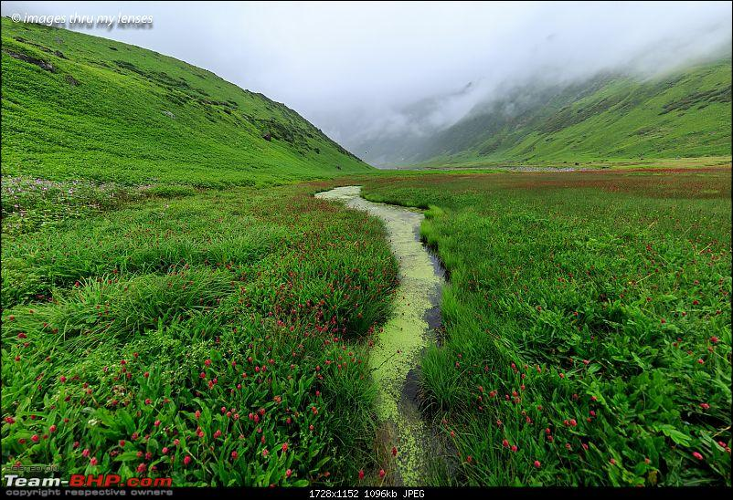 The Mandini Valley, Garhwal Mountains & Monsoons-mandini-trek-338-mandini-1.jpg