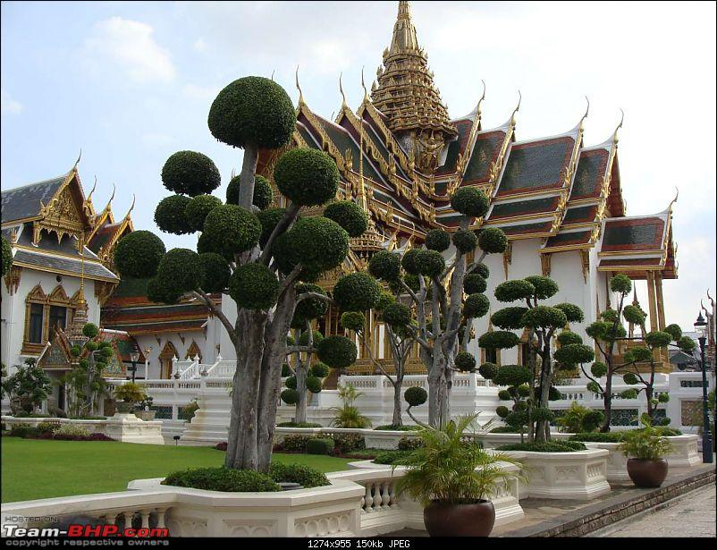 10 days across Thailand (2009) - and 8 more days (2011)-flowers-8.jpg