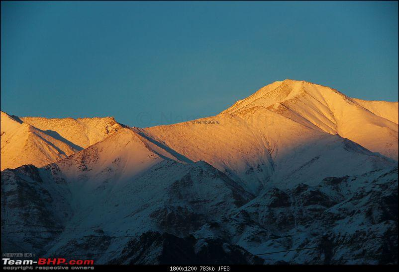 Five brother's winter trip to Leh - Ladakh-img_2367.jpg