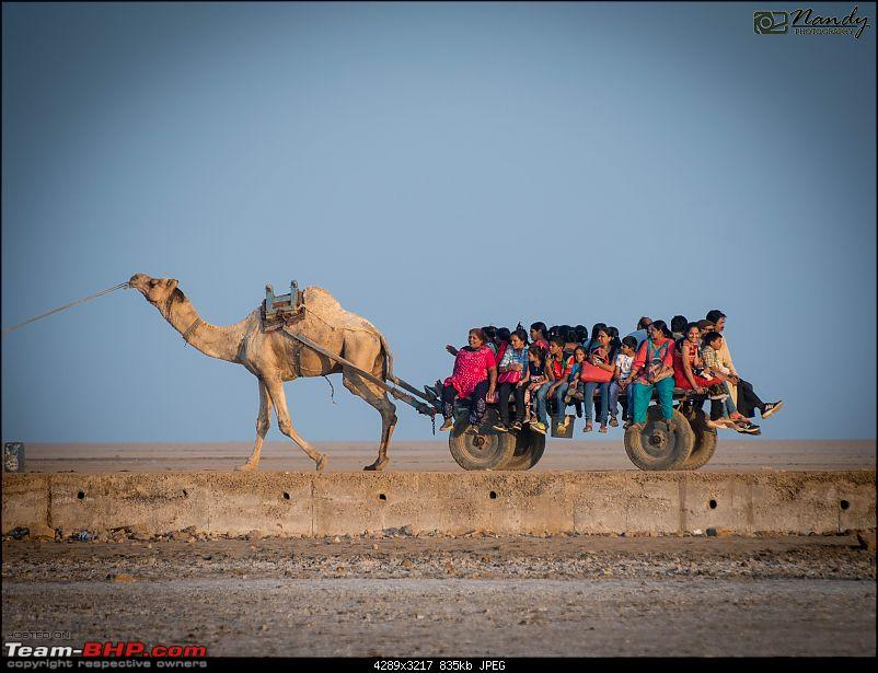 Ride to the Jewels of Western India (Gujarat and Rajasthan