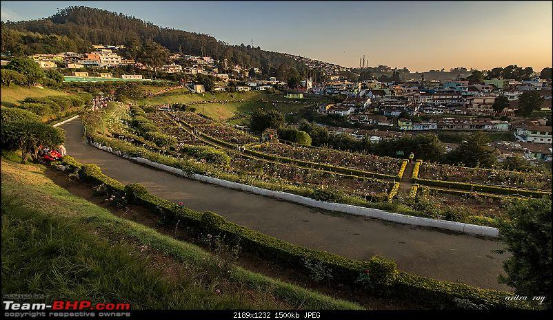 Hyderabad-Ooty in a Duster AWD-2-rose-garden-sunset-.jpg