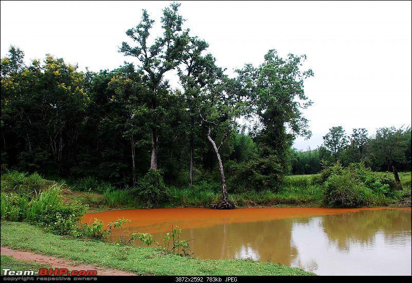More Pics: Hyd-Bandipur-Madumalai-Nagarahole-fresh-water.jpg