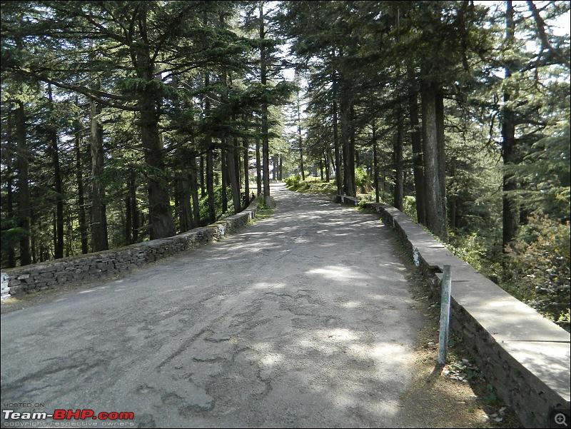 8597 Kms Drive - Exploring Himachal! Amritsar – Khajjiar – Dalhousie – Dharamshala – Manali - Chail-cp16.jpg