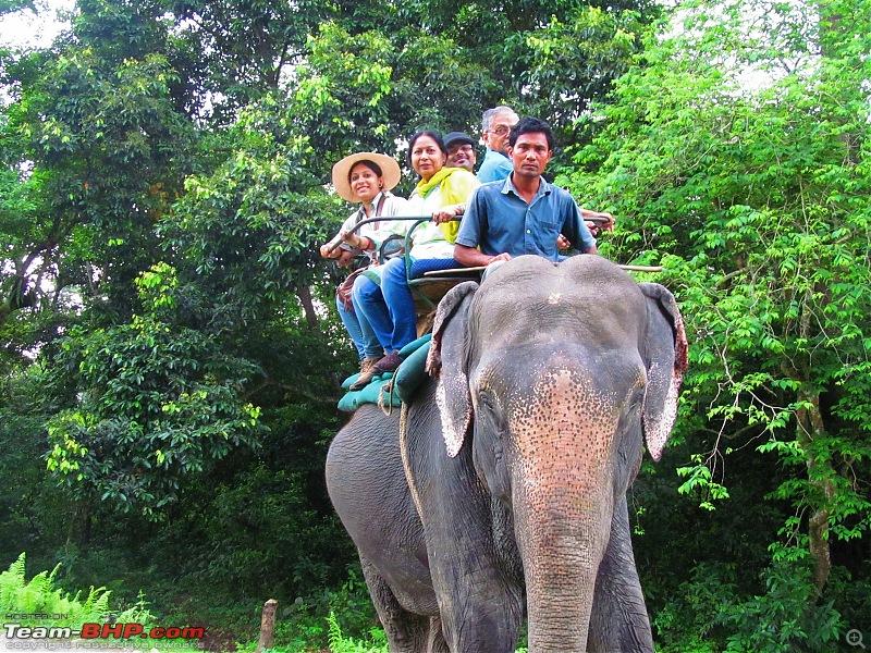 Call of the Wild: 1627 km drive to Jaldapara National Park, Buxa, Jayanti & Phuntsholing (Bhutan)-img_7845.jpg