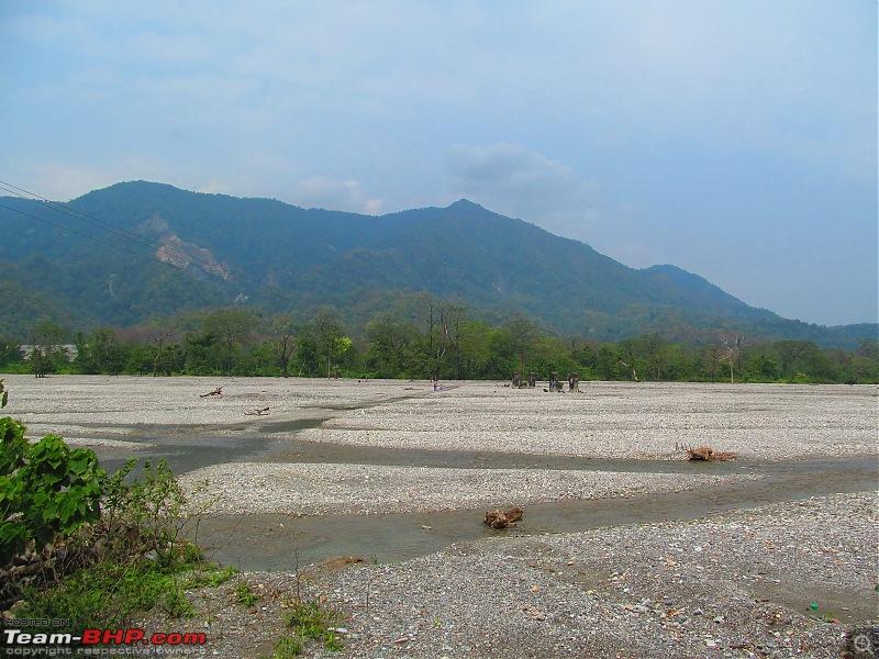 Call of the Wild: 1627 km drive to Jaldapara National Park, Buxa, Jayanti & Phuntsholing (Bhutan)-img_7868.jpg