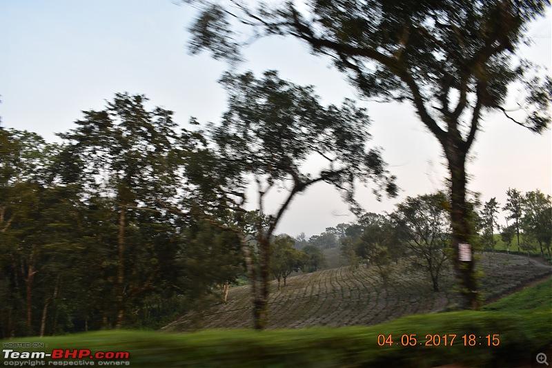 Blue Bolt - Summer Sprint of 3084 km! Hyderabad, Madurai, Rameswaram, Kodaikanal & Valparai-dsc_0984.jpg