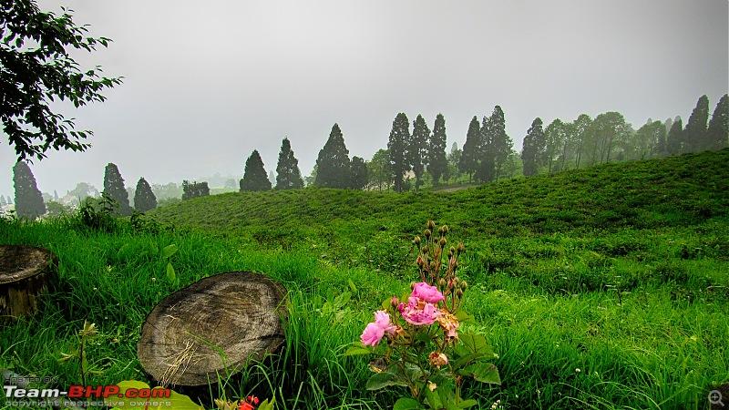 Mystical Sikkim - Utopia here, now!-24.jpg