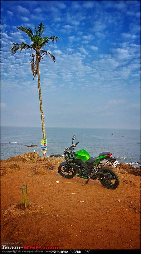 Chennai - Goa on a Kawasaki Z250-vagatoer-cliffr-tree.jpeg