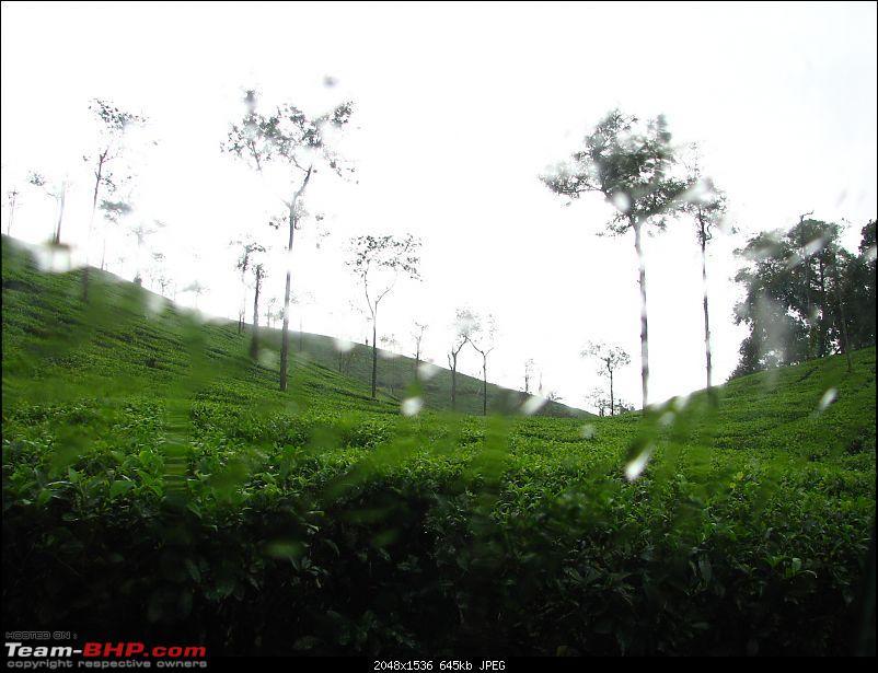 Roadtrip through South India : Hyd - Blr - Wyn - Mys - Blr - Hyd-img_4497.jpg