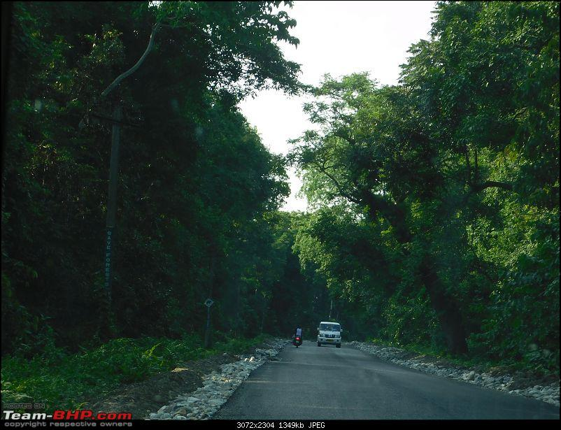 Tuskers of Chilapata : A thrilling drive to Northern Bengal & Bhutan-dscn0183roadtobuxa.jpg