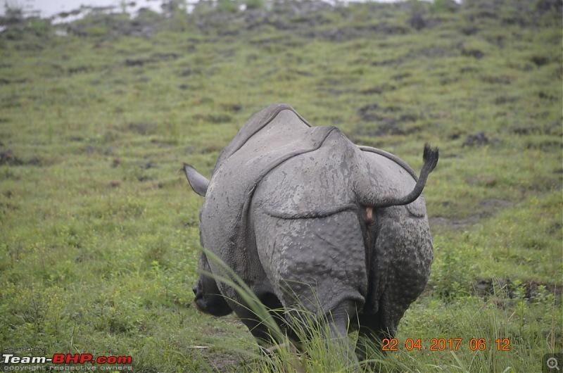 NorthEast Reloaded: Meghalaya -> Assam -> Arunachal-10_dsc0171.jpg