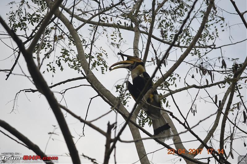 NorthEast Reloaded: Meghalaya -> Assam -> Arunachal-57_dsc0461.jpg