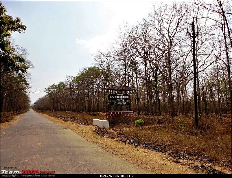 Hummer's Travel: Dandeli, an amazing gateway to nature & adventure-d01_reserveforestentry.jpg