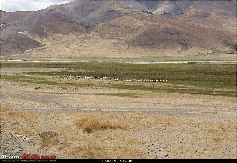 Traversing The Tibet Plateau To Mount Kailash-dsc01146.jpg