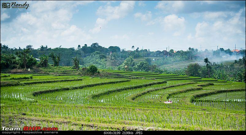 From the chapter of our life, called Bali-dsc_0983.jpg