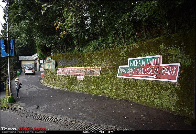 A short trip to Darjeeling immediately after the 104 day Bandh in our Thar-dsc_0673.jpg