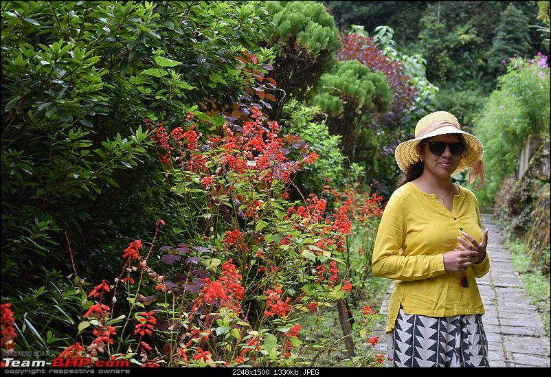 A short trip to Darjeeling immediately after the 104 day Bandh in our Thar-dsc_0778.jpg