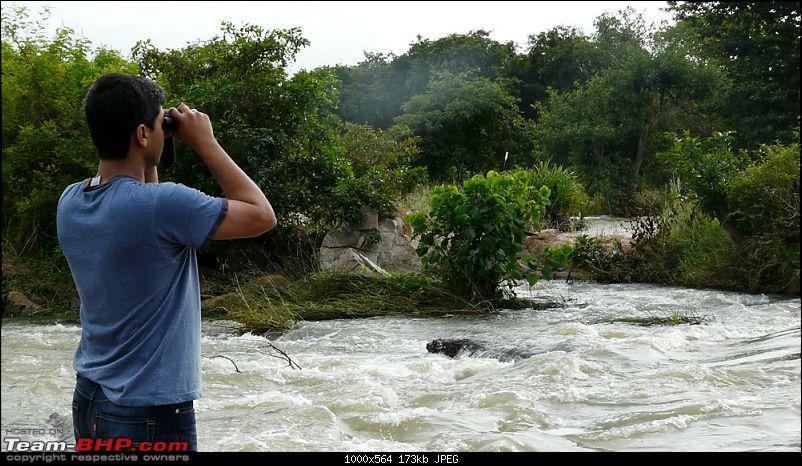 Weekend River Raid !!-p1090885.jpg