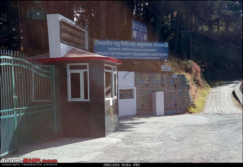 The Red One® (TRO®) Travels: Mukteshwar & Uttarakhand | Our Brass Journey-around_mukteswar-28k500.jpg