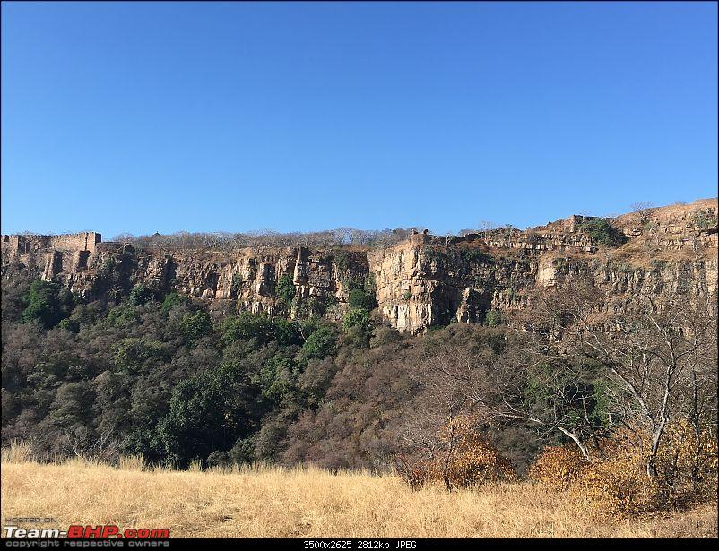 Ranthambore - Land of Forts, Hills & Tigers-14-zone-2-landscape.jpg